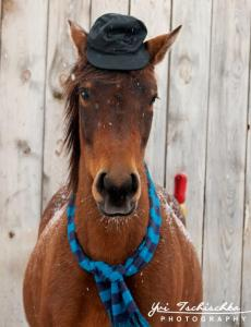 Resi mit Hut, Foto: Yvi Tschischka
