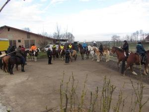 20 Reiter und Pferde waren dabei! Foto: Zykloopenteam