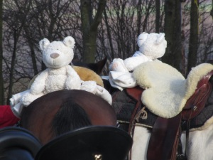 Eisbären waren auch unterwegs! Foto: Zykloopenteam