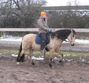 Jacinto mit dem Sattel - Das Pony könnte etwas positiver gucken, aber zumindest die Reiterin lächelt ...