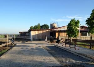 Pflastersteine und Aussichtsplattform, Foto: privat