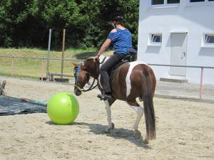 Pferdefussball, Foto: privat