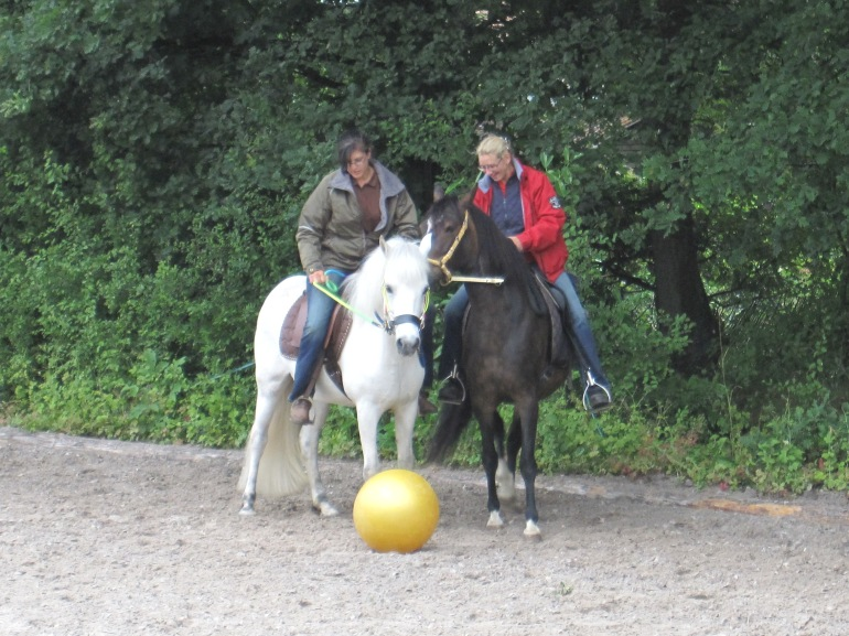 Pferdefussball