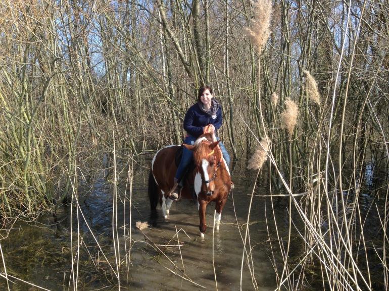 Sumpf im Sumpf - Foto: privat
