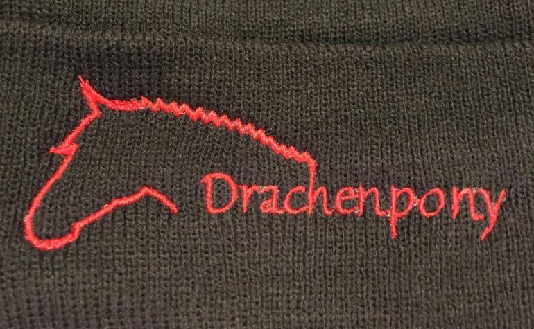 Drachenpony